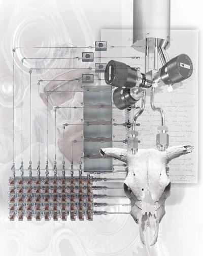 Medicine Man | Digital Collage | Christel's Design Studio