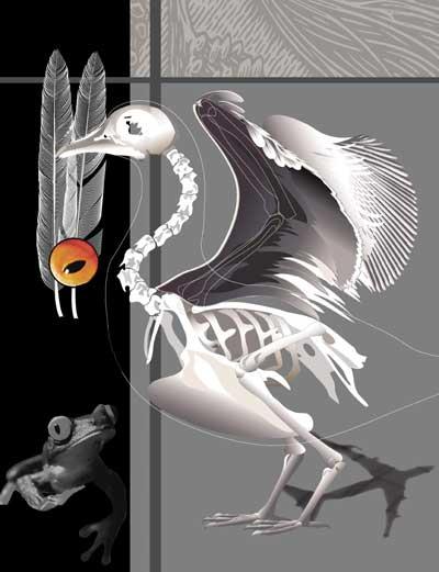Taking Flight | Digital Collage | Christel's Design Studio